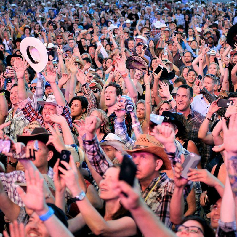 Crowd-Best-w800h800